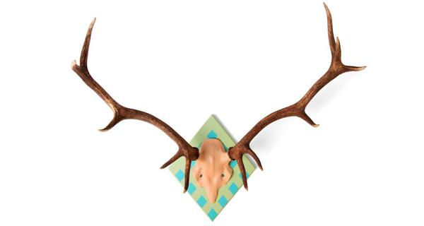 Fique a conhecer a dupla de criadores da My Deer