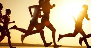 Exercício físico reforça o cérebro contra o stress
