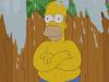 Homer Simpson vai a banhos